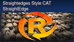Straightedges Style Catalytic Converter